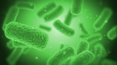 Green Bacteries X-Ray Stock Footage