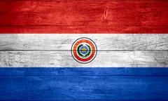 flag of Paraguay - stock illustration