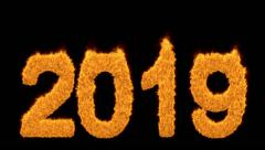 Burning 2019 year with numbers made of flames - stock footage