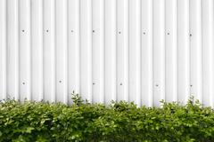 Bushes with green leaves in a white metal fence - stock photo