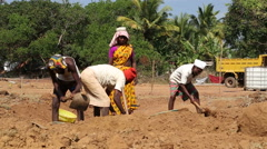 Men digging soil that woman carries away in a head bowl. Stock Footage