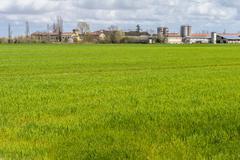 Agricultural landscape - stock photo