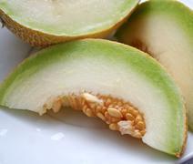 honigmelone - stock photo