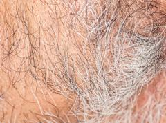 Hair of the beard. close-up Stock Photos