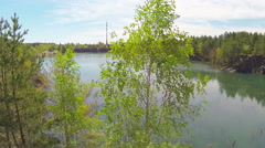 Birch on the stony shore. The camera moves back Stock Footage