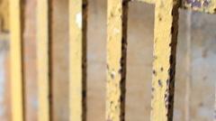 Old Prison Bars GUAM, USA- CIRCA February, 2011 Stock Footage