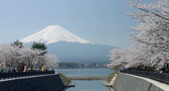 Mount Fuji and people color graded (4000x2160) Stock Footage