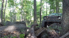 Jeep trails in woods Stock Footage