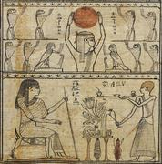 Egyptian papyrus - stock photo