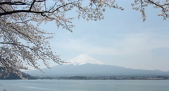 Quiet Mt.Fuji 4k color graded (4000x2160) Stock Footage