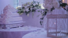 Wedding reception visuals Stock Footage