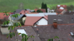 Black forest in Germany Stock Footage