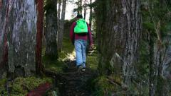 People hiking on a trail Stock Footage