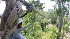 Zipling in Belize Stock Footage