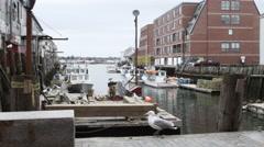Small New England marina Stock Footage