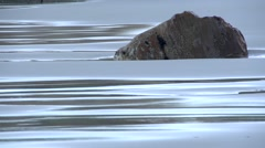 Boulder in the  beach sand Stock Footage