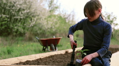 Caucasian boy on a bed in the garden.Organic farming. Stock Footage