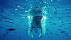 Slow motion underwater view of man diving into water amongst school of fish Stock Footage