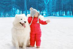 Child with white Samoyed dog in winter day - stock photo