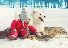 Happy child with white Samoyed dog on the snow in winter day Stock Photos