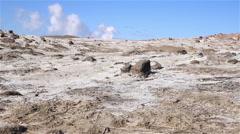 Smoking wasteland slide pan volcanic landscape, Gunnuhver Iceland Stock Footage