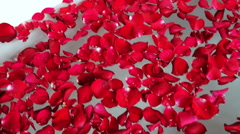 Red rose petals in bathtub, Hotel Amar Villas, Agra, Uttar Pradesh, India Stock Footage