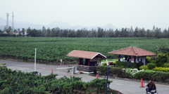 Locked-on shot of the Sula Vineyards, Nashik, Maharashtra, India Stock Footage