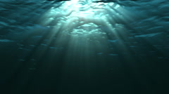 Looping animation of ocean waves from underwater. Light rays shining through. - stock footage