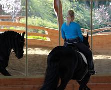 Girl Riding Black Stallion Stock Photos