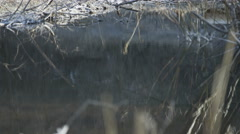 Slow motion reflection on water of man trail running Stock Footage