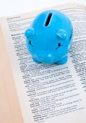 Pig Banking Deposit Stock Photos