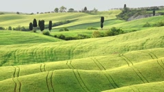 Beautiful fields, hills of Tuscany, Italy Stock Footage