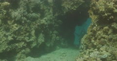 Underwater diver cave 4K Stock Footage