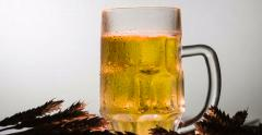 Lager Beer in a Mug 4K - stock footage