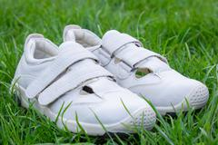 White shoes on the grass Stock Photos