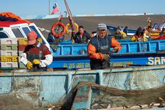 Offloading the Catch Stock Photos
