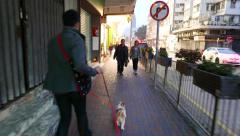 Man running with two lap-dogs on night street. Stock Footage