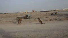 Exercise counter - IED Italian army in camp Arena in Herat . - stock footage