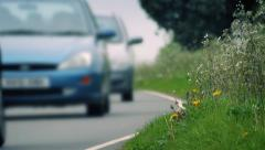 Grass At Side Of Road With Passing Cars Stock Footage