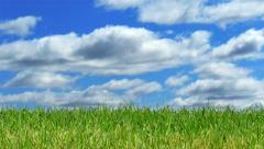 Green Grass with Time Lapse Sky, Panning Right to Left Stock Footage