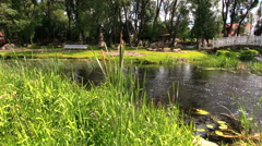 Summer flow stream in green park Stock Footage