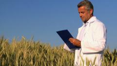 Quality control in wheat field Stock Footage