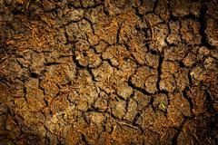 Cracked earth surface Stock Photos