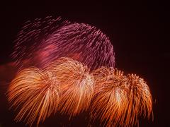 beautiful bright colorful fireworks - stock photo
