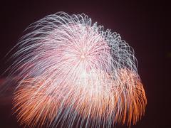 Beautiful colorful fireworks Stock Photos