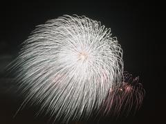 beautiful white balloon fireworks - stock photo
