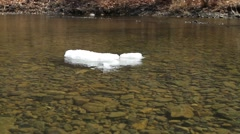 Ice flow, Wild river the floating ice floe, clear water, can see the bottom Stock Footage