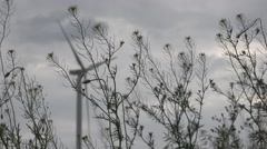 Stock Video Footage of Green grass and flowers in front of a backdrop of wind turbines twist propellers