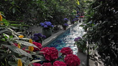 Washington DC National Botanical Garden fountain flowers 4K Stock Footage