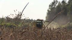 Combine harvest wheat grain agricultural field and ripe ears Stock Footage